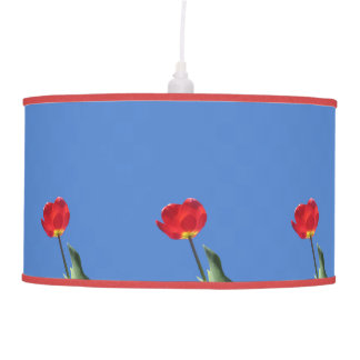Lamp - Pendant - Red Tulip Blue Sky 2
