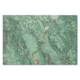 Land Classification Map of Idaho Tissue Paper