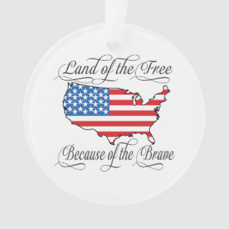Land of the Free because of the Brave Patriotic US