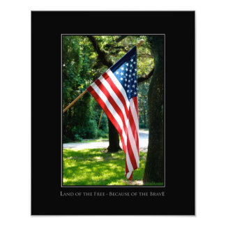 """""""Land of the Free--Because of the Brave"""" photo"""