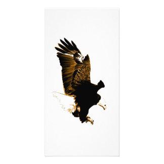 Landing Eagle Picture Card