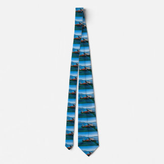 Landing stag and speed boat tie