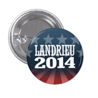 LANDRIEU 2014 PINS