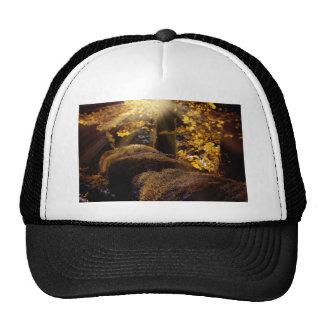 landscape-1042-eop trucker hat