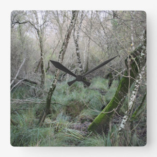 Landscape cork oaks and nature in Doñana, Spain Wall Clocks