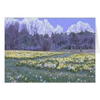 Landscape Daffodil Card