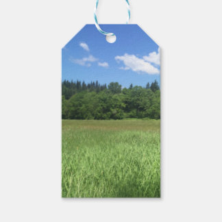 Landscape Gift Tags