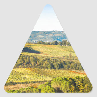 Landscape in Tuscany, Italy Triangle Sticker