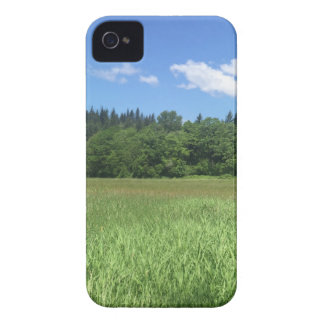 Landscape iPhone 4 Cover