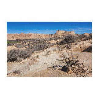 Landscape of Bardenas réels Toile Tendue