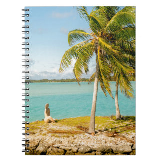 Landscape off will bora will bora notebook