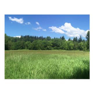 Landscape Postcard