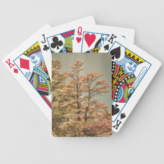 Landscape Scene Colored Trees at Glacier Lake Bicycle Playing Cards