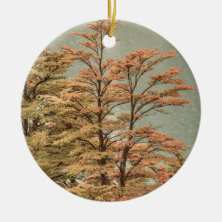 Landscape Scene Colored Trees at Glacier Lake Ceramic Ornament