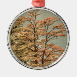 Landscape Scene Colored Trees at Glacier Lake Metal Ornament
