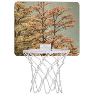 Landscape Scene Colored Trees at Glacier Lake Mini Basketball Hoop