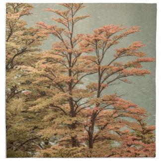 Landscape Scene Colored Trees at Glacier Lake Napkin