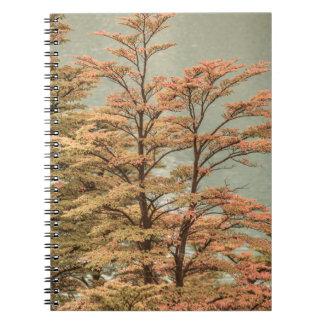 Landscape Scene Colored Trees at Glacier Lake Notebook
