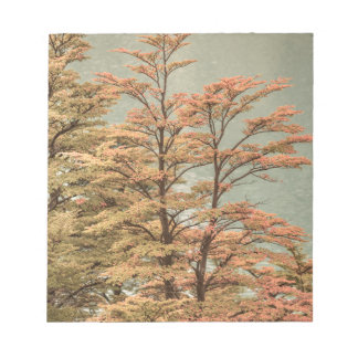 Landscape Scene Colored Trees at Glacier Lake Notepad