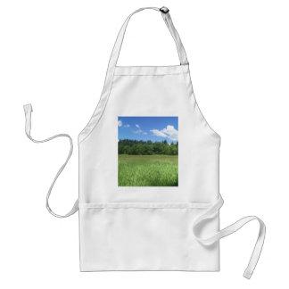 Landscape Standard Apron