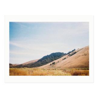 Landscape Western USA Postcard