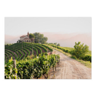Landscape with vineyards and church poster