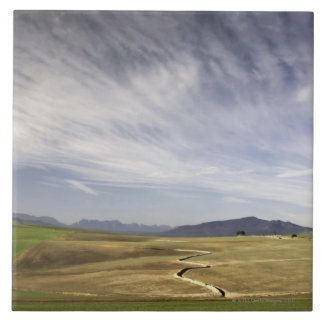 Landscape with wheat fields, Grabouw, Western Tile