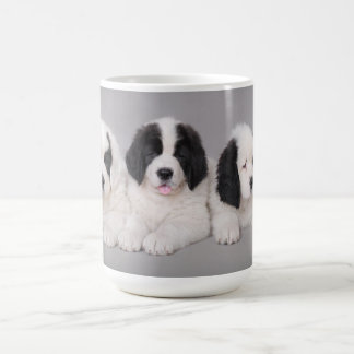 Landseer puppy coffee mug