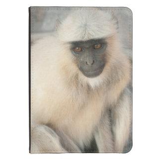 Langur Monkey, Amber Fort, Jaipur, Rajasthan Kindle 4 Cover