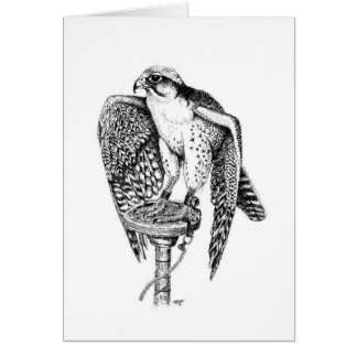 Lanner Falcon Birthday Card
