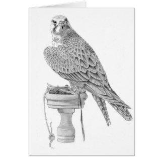 Lanner Falcon Birthday Card