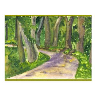 Lanscape Forest Postcard