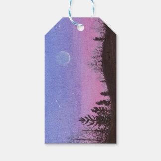 Lansing Moon & Stars Gift Tags