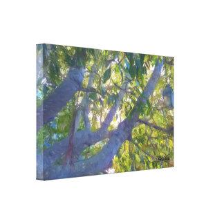 Lanterns In Tree Canvas Print