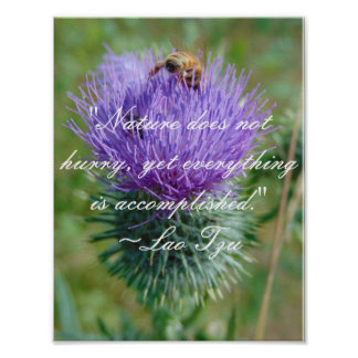 Lao Tzu Nature Quote Poster