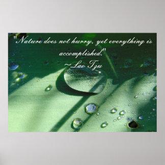 Lao Tzu Nature Quote Poster