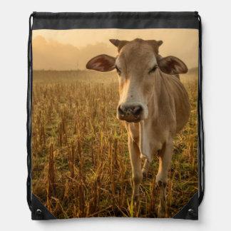 Laos, Vang Vieng. Cow at sunrise Drawstring Bags