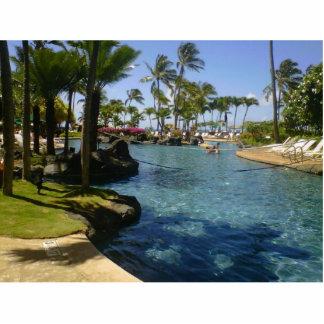 Lap of Luxury in Hawaii Standing Photo Sculpture