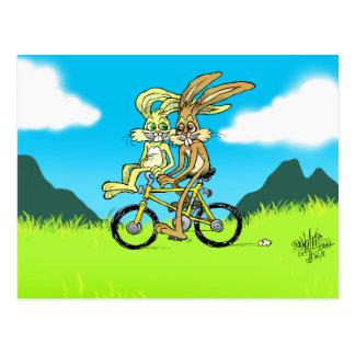 Lapins de bande dessinée sur une bicyclette. sur cartes postales