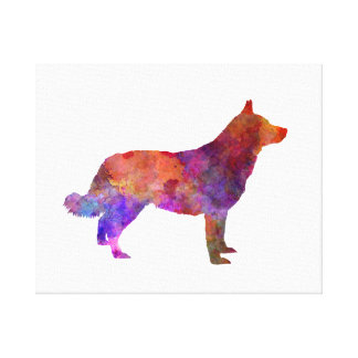 Lapponian Herder in watercolor Canvas Print