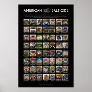 """L'araignée sautante """"de Salticids d'Américain"""" fai Poster"""