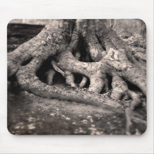 L'arbre enracine Mousepad Tapis De Souris