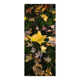 "Large Autumn Leaf on Grass  - 4"" x 9.25"" Card"