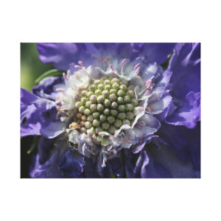 Large Blue Flower Canvas Print