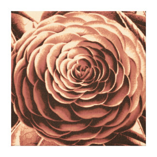 Large Camellia, Brown, Beige and Sepia Tone Canvas Print