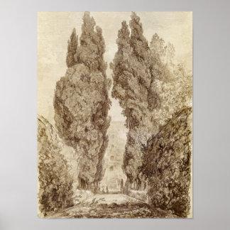 Large Cypresses at the Villa d'Este Poster