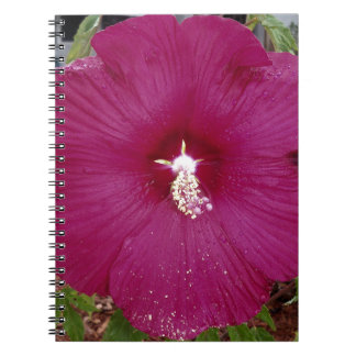 large dark red Hibiscus Spiral Notebook