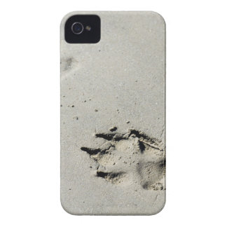 Large dog's paw prints on wet sand iPhone 4 cases