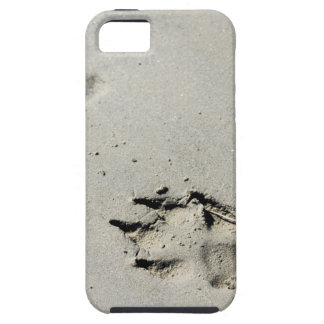 Large dog's paw prints on wet sand iPhone 5 cover