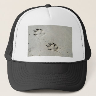 Large dog's paw prints on wet sand trucker hat